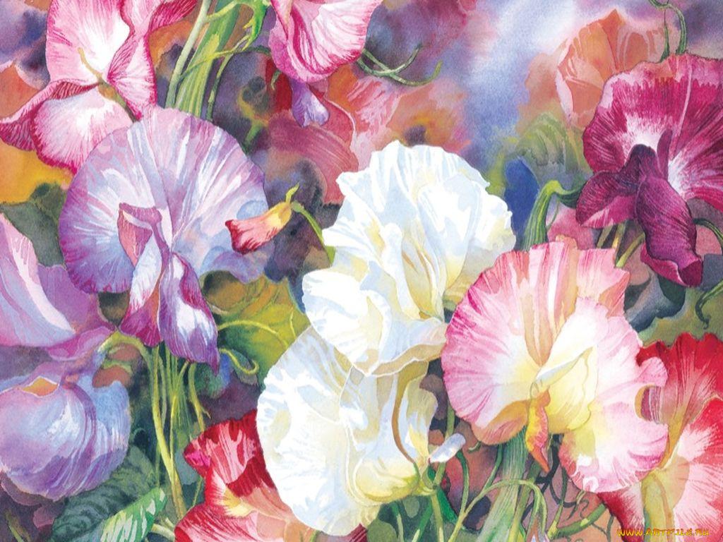 картинка полотно цветов такой схеме